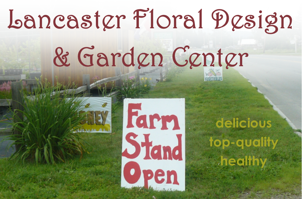 farm stand lancaster floral design and garden center NH
